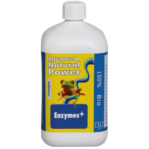 Enzymes +