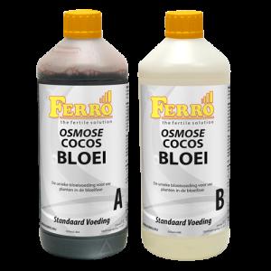 Coco Bloei Osmose